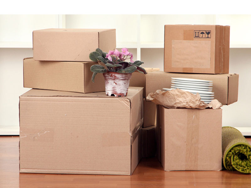 Annapurna Packers & Movers1